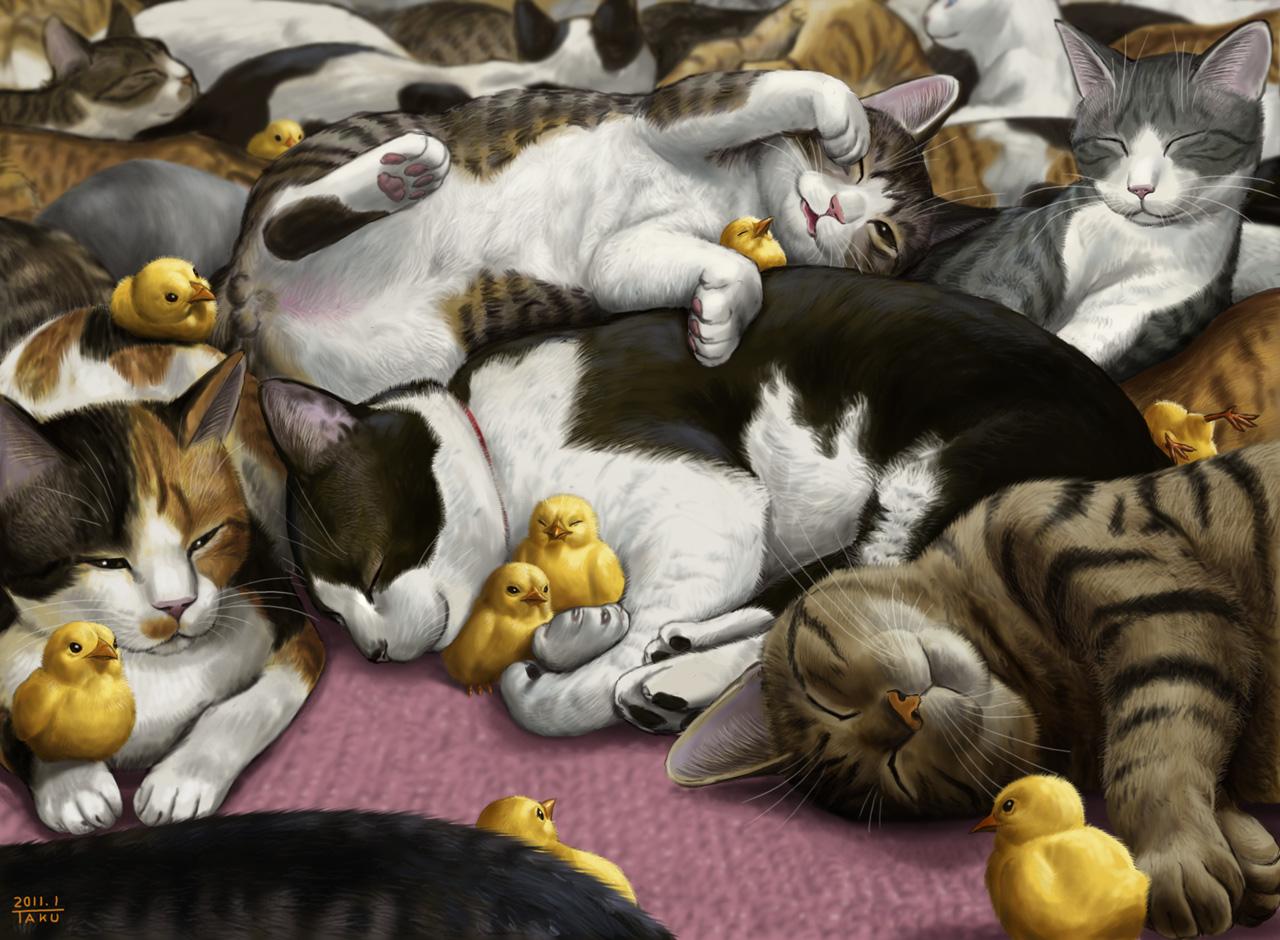 瞬くの落書き帳 猫 : 猫c(-。-,,)...