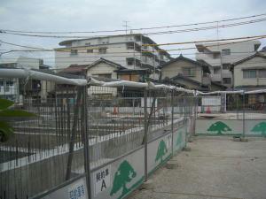 2007-8-2.jpg