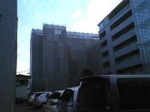 2008-1-2.jpg