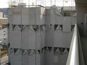 2008-2-19d.jpg