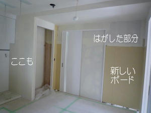 2008-6-18c.jpg