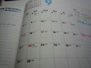 2008-8-25b.jpg