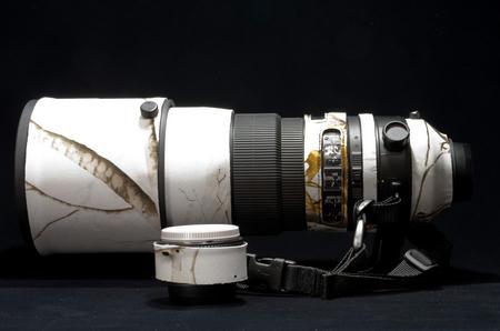 AF-S NIKKOR 300mm f/2.8G ED VR II & TC-17E II