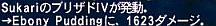ff100628-9.jpg