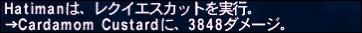 ff120628-4.jpg