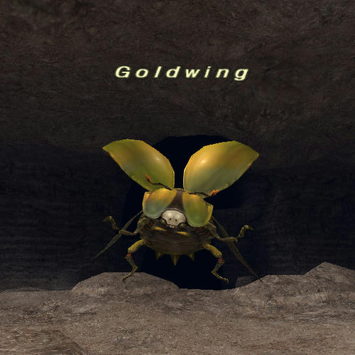 Goldwing.jpg