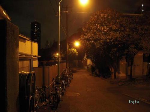 東大の電灯