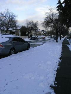 snow0129.jpg