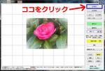 b6cdd636.jpg