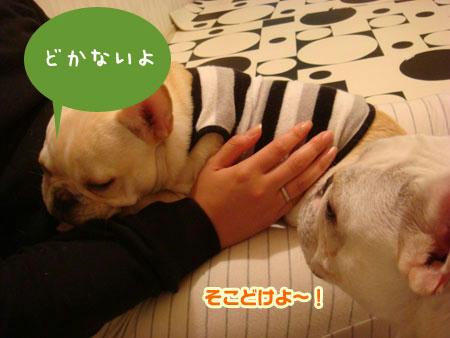 20071023_2.jpg