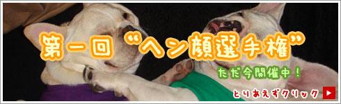 banner_hen.jpg