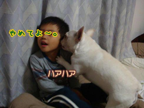 20071108_9.jpg