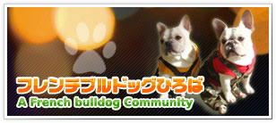banner_2008016.jpg