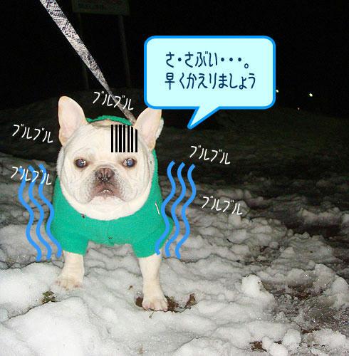 20080207_2.jpg