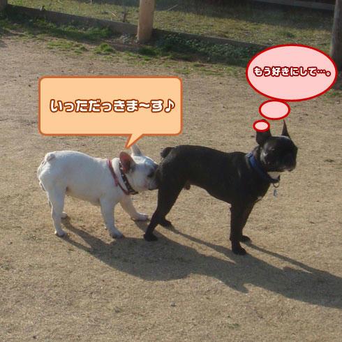 20080325_15.jpg