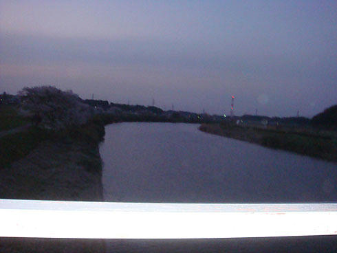 20080410_6.jpg