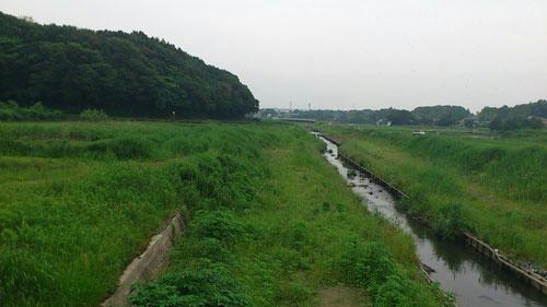 20110613_1.jpg