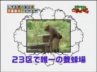 c_097.jpg