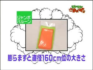 ryo3_004.jpg