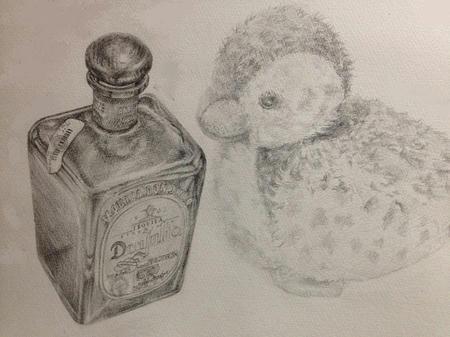Tequila and Karugamo テキーラの空瓶1本と、かるがものぬいぐるみ1つを、鉛筆でデッサンした絵を写した写真。画面左に、テキーラのつややかなガラスビンが描かれており、ビンには税関のシールやお酒のロゴラベルが貼られている。画面右に描かれているかるがもは、鉛筆で淡く描かれている。