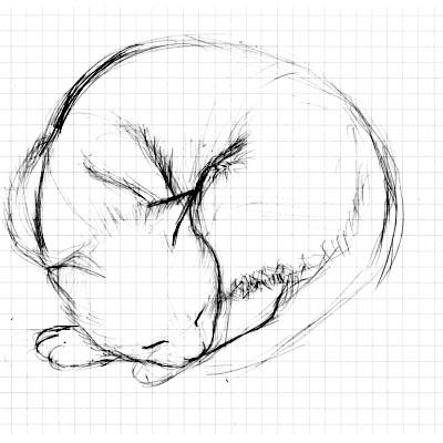猫のスケッチ_061008_001.jpg