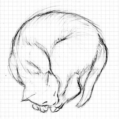 猫のスケッチ_061008_002.jpg