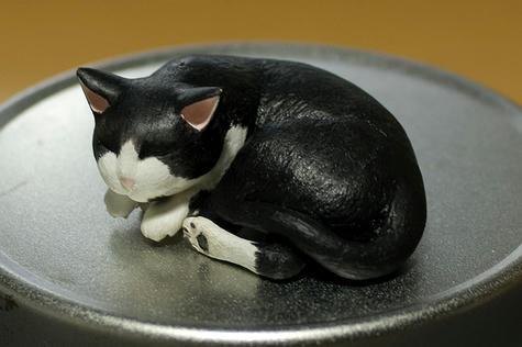 猫_完成間近_070618