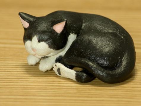 猫_左側面_070626