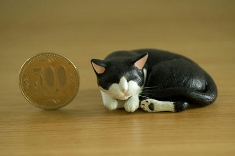 猫_500円玉とのサイズ比較_070701