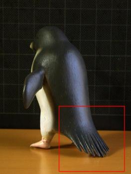 アデリーペンギン_リニューアル前の尾羽その1