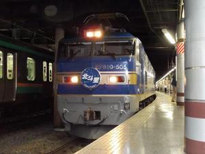 DSCN4600s.jpg