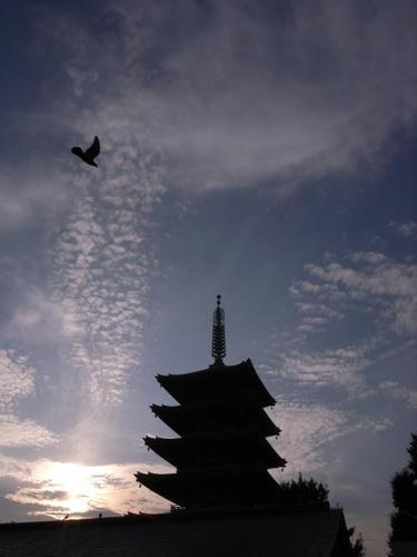 夕暮れ五重塔
