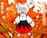 犬走椛ともみぢの季節