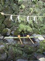 kifune03.jpg