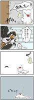 ayamomi_kurau04.jpg