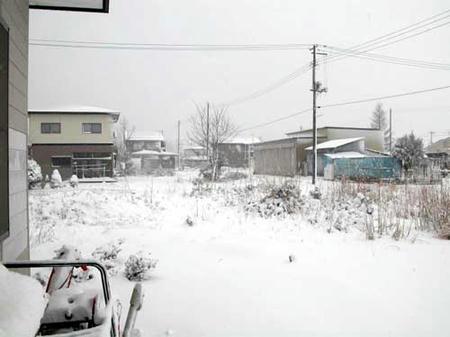 雪1229