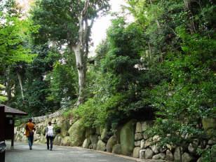 2011_11_02.jpg