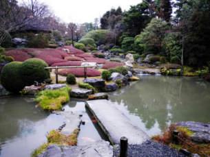 2012_03_12.jpg