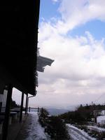 noki_Snow.JPG