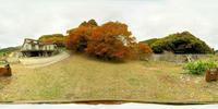 Apg_Magaribuchi_Kaede2_equi_up.jpg