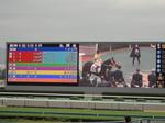 阪神競馬場の大型スクリーン