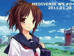 20110128_mediverse_ws_0_img.jpg