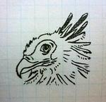 猛禽好きです