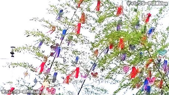 """°○°東京ディズニーシー """"七夕デイズ2016"""" に因んだ季節のスペシャル・カクテル@テディ・ルーズヴェルト・ラウンジ"""