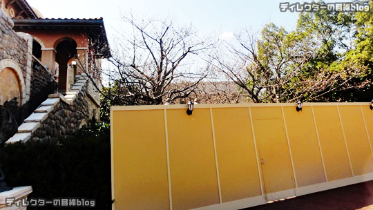 °○°まだ一分咲き…ミラコスタの桜2017@東京ディズニー・シー(ピクニックエリア)