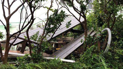 なぜ台風15号で甚大な被害を受けた千葉県館山市や南房総市が報道されないの!?
