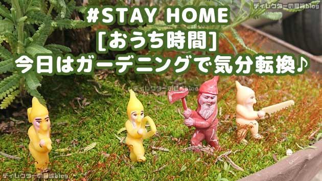 #STAY HOME [おうち時間] 今日はガーデニングで気分転換♪