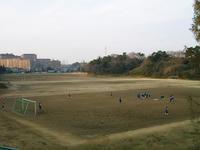 東京大学総合運動場