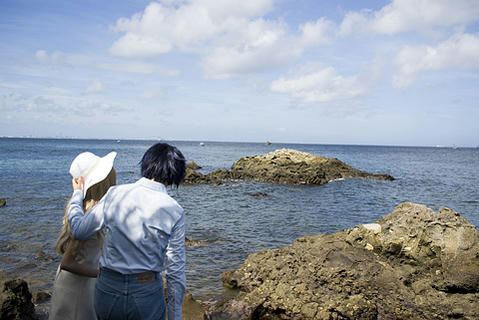 20070916saru03.jpg