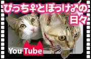 YouTube_ban.jpg
